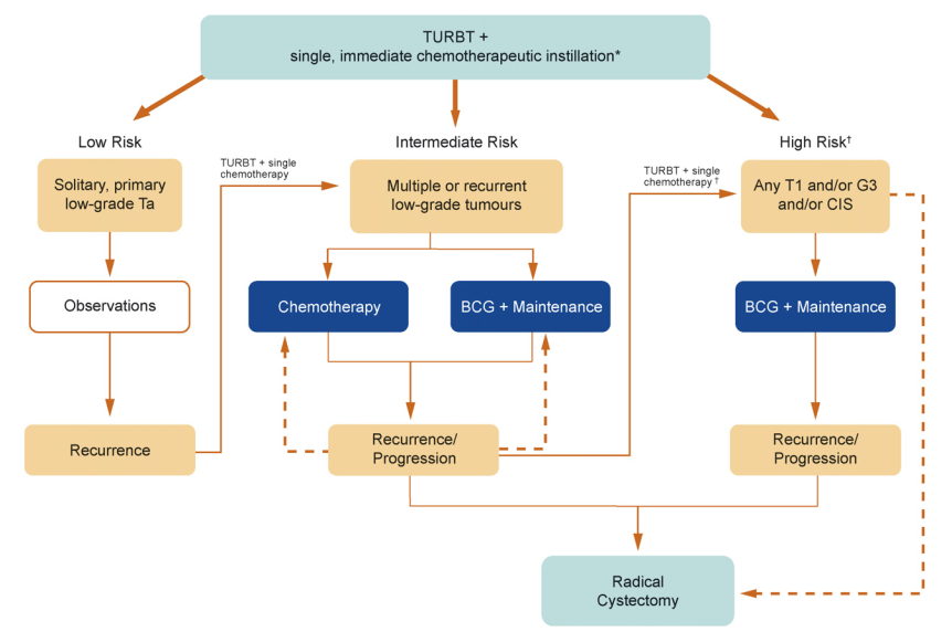 Algorithm for the treatment and management of primary non–muscle invasive bladder cancer proposed by the International Bladder Cancer Group.